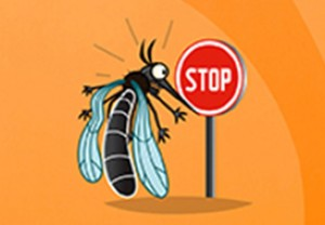 Stop au moustique Tigre !